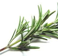 Kitchen Hoodoo   Using Rosemary in Hoodoo, Conjure and Candle Spells